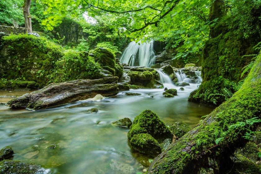 B2B NETWORK NEWS nature water