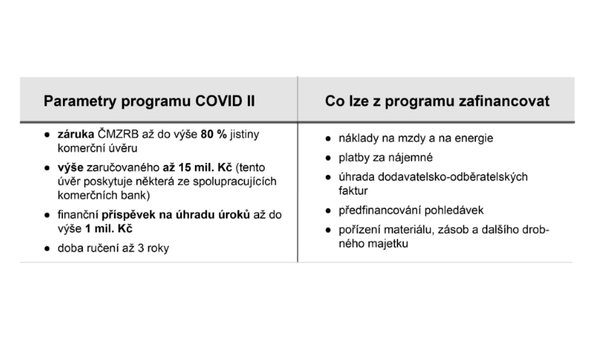 COVID II