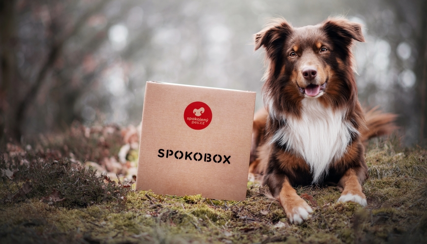 Spokobox